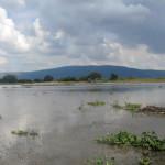 Suroeste de Guanajuato entre agua
